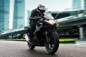 GSX250RAL8_Action_1