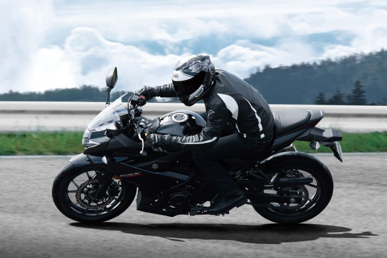 GSX250RAL8_Action_5