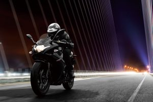 GSX250RAL8_Action_7