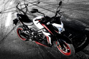 GSX-S1000YAL8_action_1