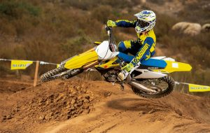 RM-Z250M0_action10