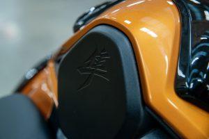 Busa_Detail_Seat_Hump_2